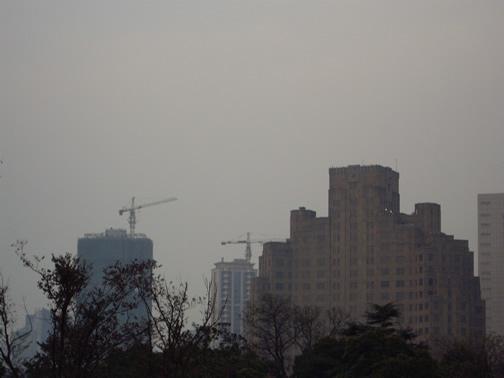 shanghaicranes.jpg
